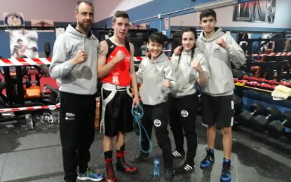 El Club Segoboxing obtiene cuatro metales en las finales de los Campeonatos Autonómicos de Boxeo Olímpico