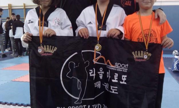 Pleno de medallas para la cantera del CD Taekwondo RM-Sport