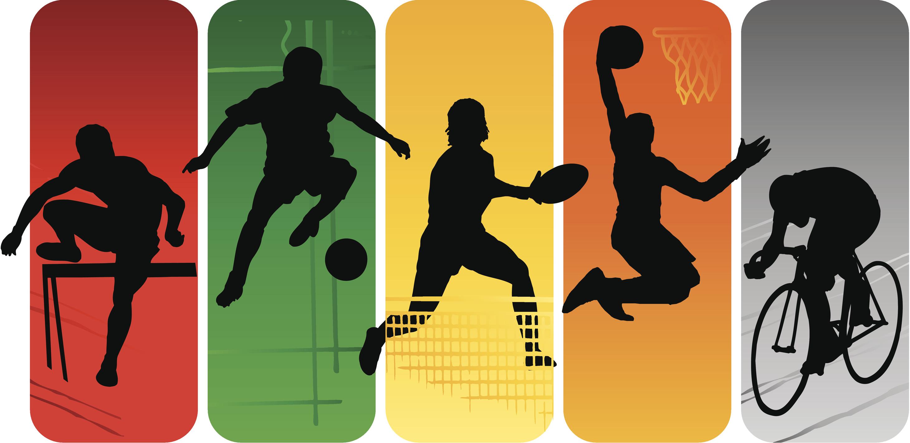 Instituto Municipal de Deportes de Segovia